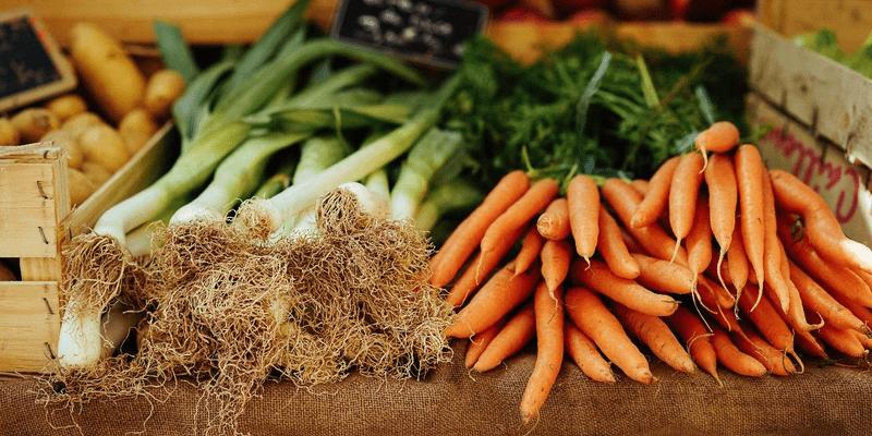 Tổng quan về Chuỗi cung ứng Thực phẩm - V04