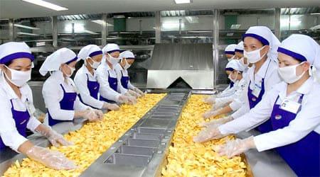 Chủ tịch Vinamit Nguyễn Lâm Viên: Khát vọng đưa nông sản Việt chinh phục thế giới - V03